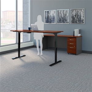 Bush Business Furniture Series C 72W Height Adjustable Standing Desk, Credenza and Storage SRC104HCSU