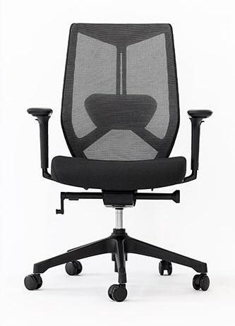 Friant Ignite Task Chair FD00253-Black